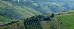 Bauernhof zum Restaurieren