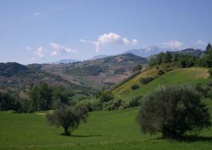 Agrargrundstück in Cellino Attanasio zum Kauf