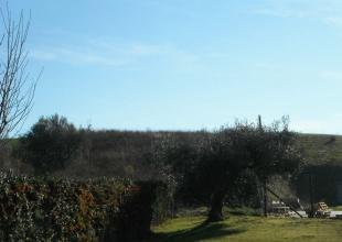 Bebaubares Grundstück in Atri zum Kauf
